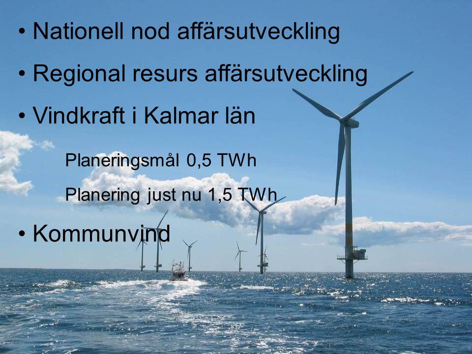 Nationell nod affärsutveckling Regional resurs affärsutveckling