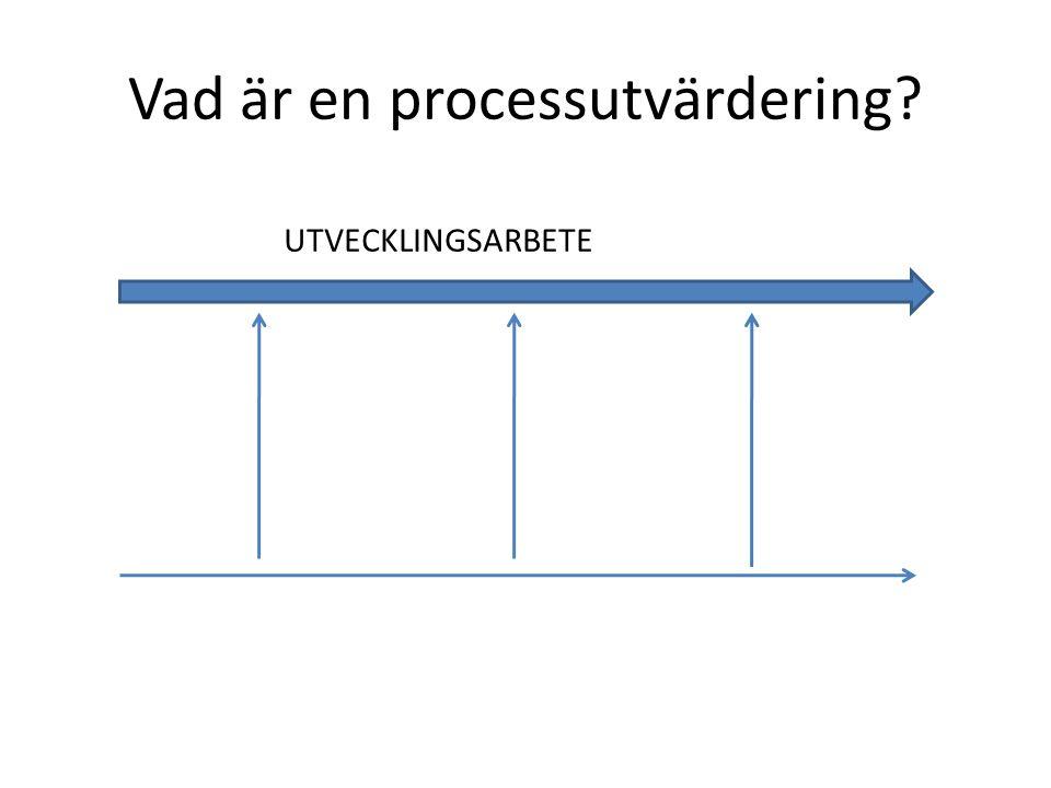 Vad är en processutvärdering