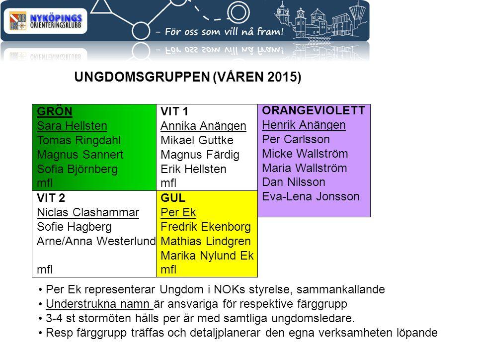 UNGDOMSGRUPPEN (VÅREN 2015)