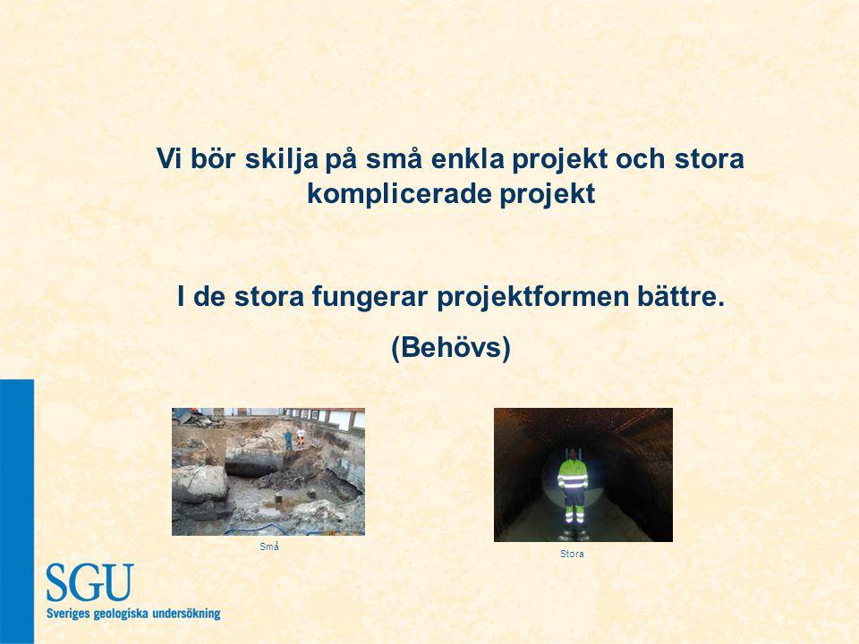 Vi bör skilja på små enkla projekt och stora komplicerade projekt