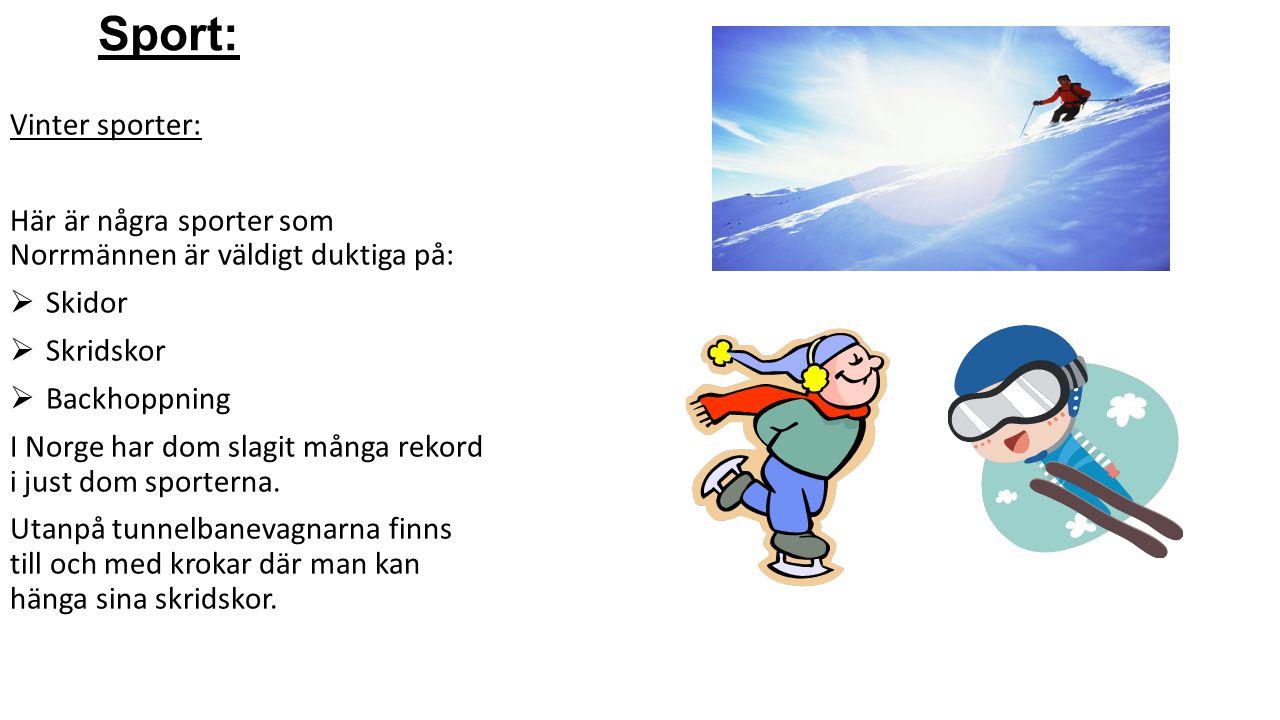 Sport: Vinter sporter:
