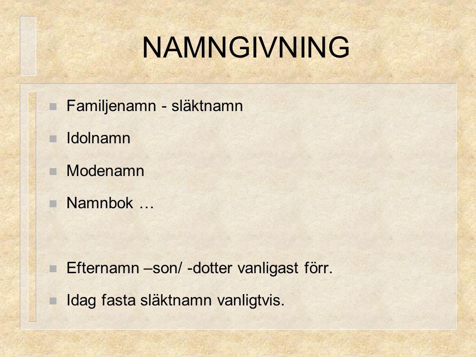 NAMNGIVNING Familjenamn - släktnamn Idolnamn Modenamn Namnbok …