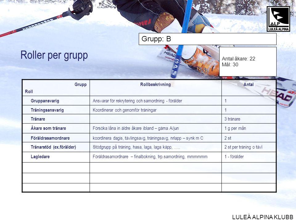 Roller per grupp Grupp: B Antal åkare: 22 Mål: 30 Grupp Roll