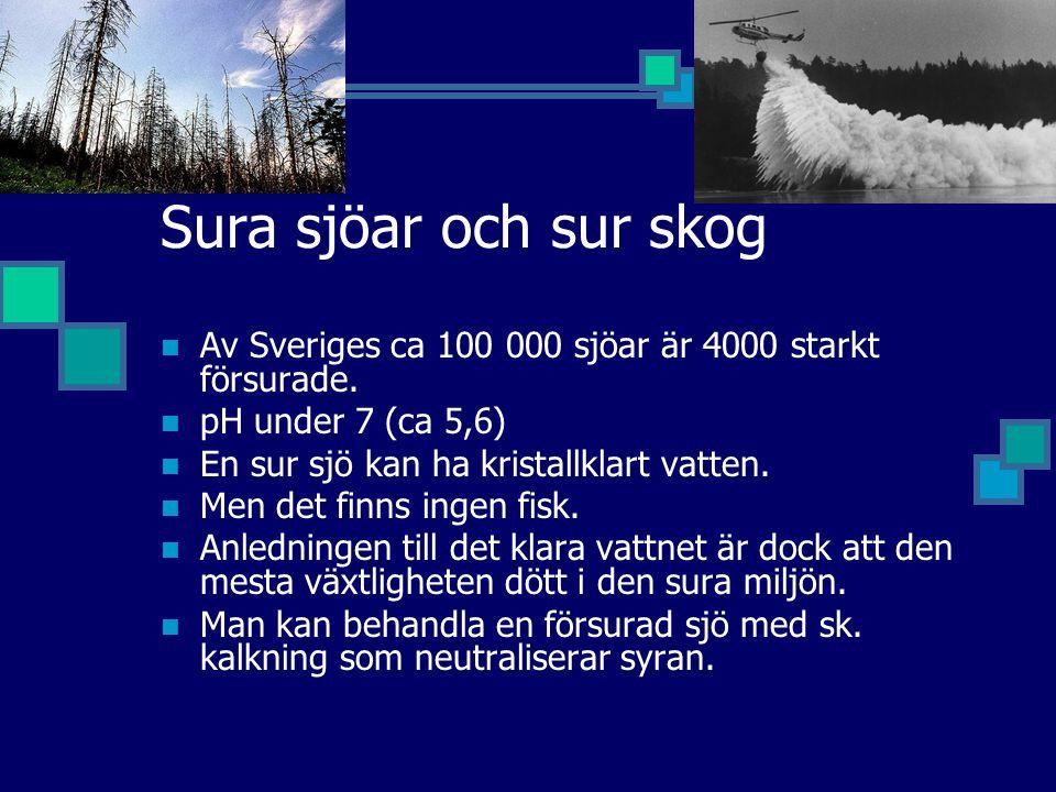 Sura sjöar och sur skog Av Sveriges ca 100 000 sjöar är 4000 starkt försurade. pH under 7 (ca 5,6)