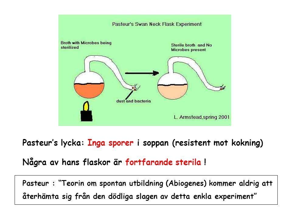 Pasteur's lycka: Inga sporer i soppan (resistent mot kokning)