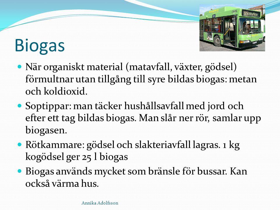 Biogas När organiskt material (matavfall, växter, gödsel) förmultnar utan tillgång till syre bildas biogas: metan och koldioxid.