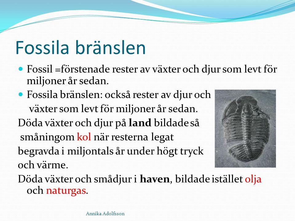Fossila bränslen Fossil =förstenade rester av växter och djur som levt för miljoner år sedan. Fossila bränslen: också rester av djur och.