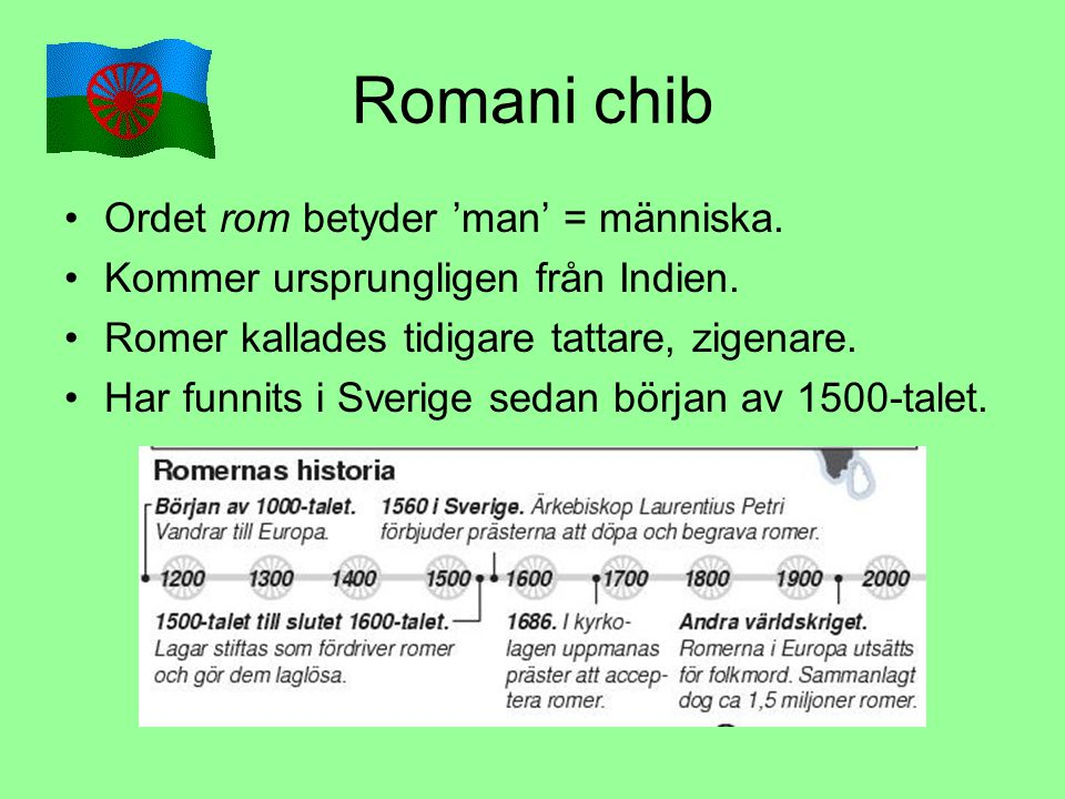 Romani chib Ordet rom betyder 'man' = människa.