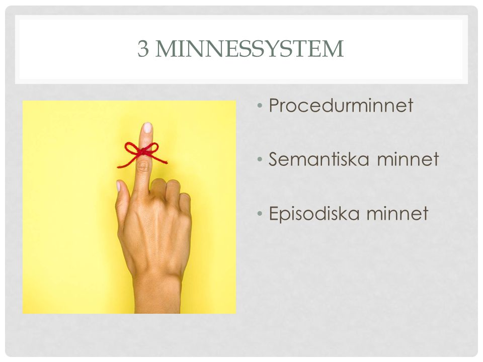 3 minnessystem Procedurminnet Semantiska minnet Episodiska minnet