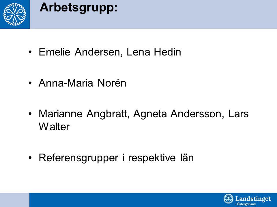 Arbetsgrupp: Emelie Andersen, Lena Hedin Anna-Maria Norén