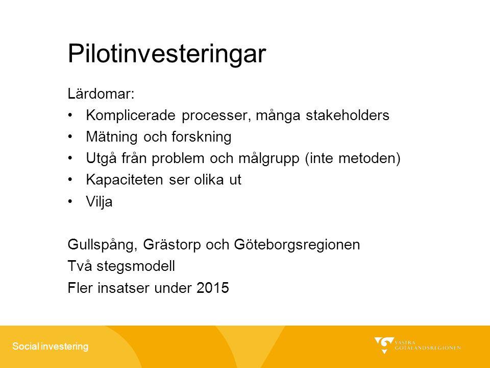 Pilotinvesteringar Lärdomar: