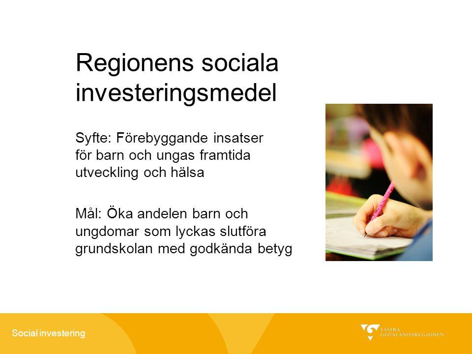 Regionens sociala investeringsmedel