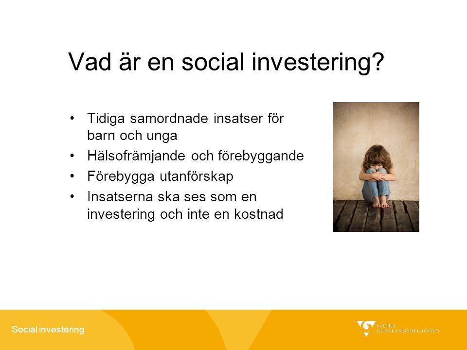 Vad är en social investering