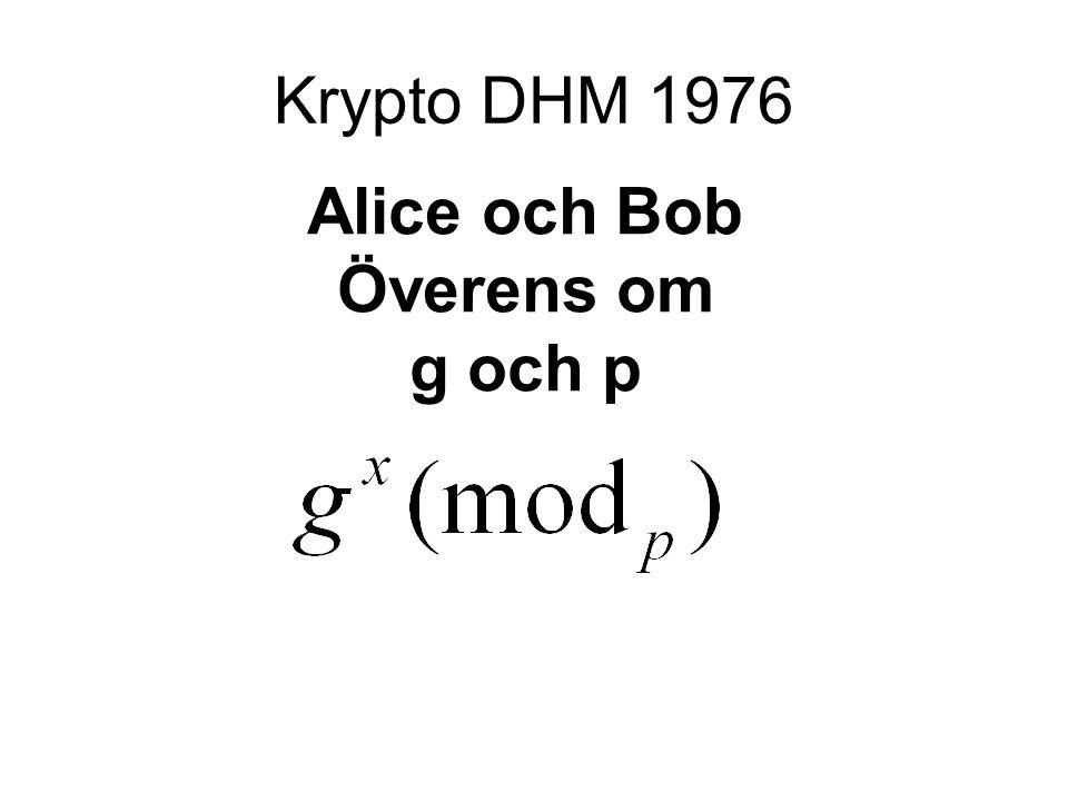 Krypto DHM 1976 Alice och Bob Överens om g och p