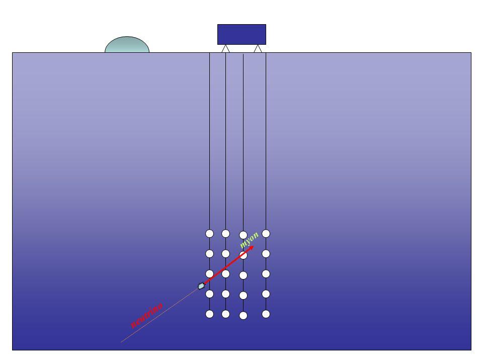myon neutrino