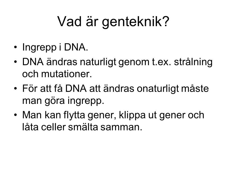Vad är genteknik Ingrepp i DNA.