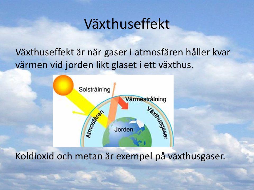 Växthuseffekt