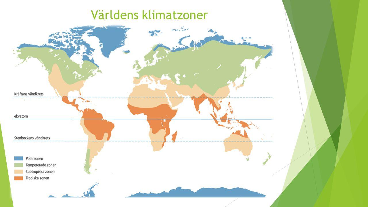 Världens klimatzoner