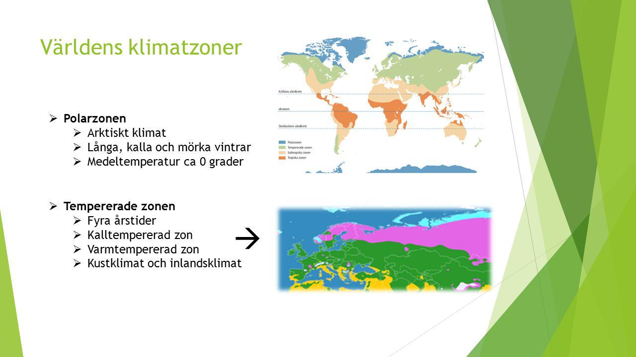  Världens klimatzoner Polarzonen Arktiskt klimat
