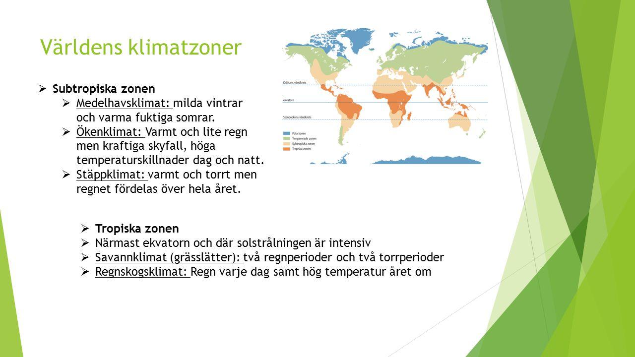 Världens klimatzoner Subtropiska zonen