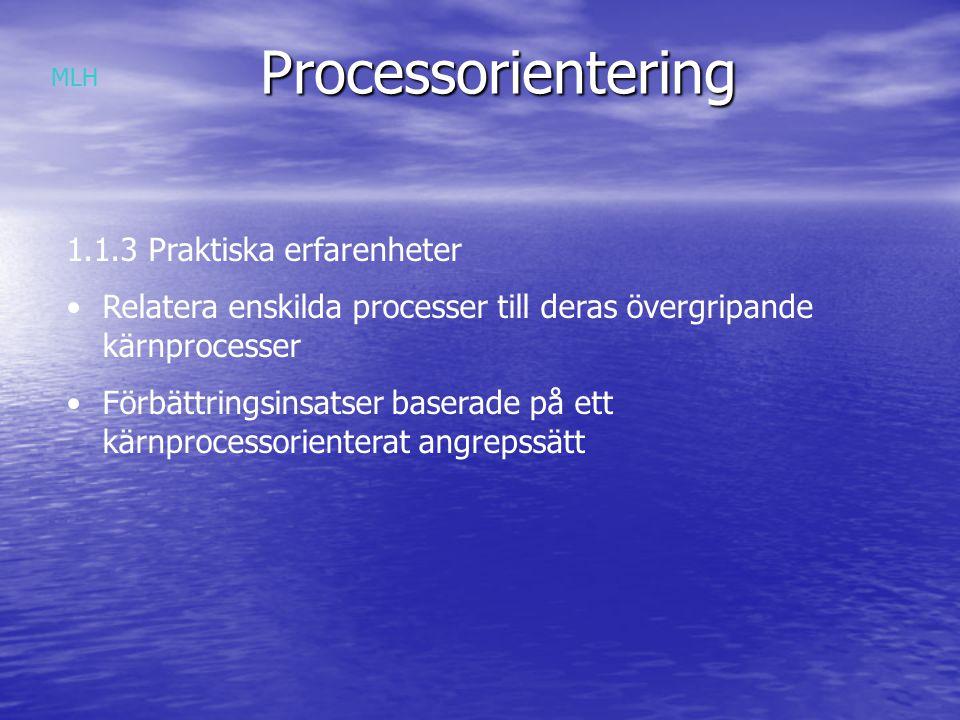 Processorientering 1.1.3 Praktiska erfarenheter