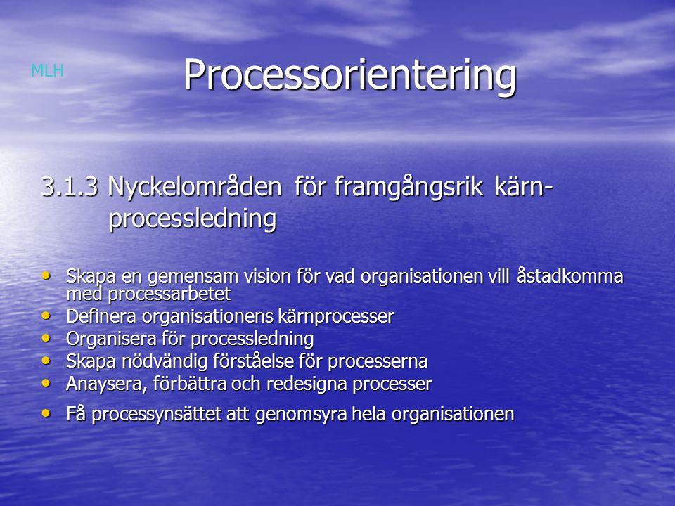 Processorientering 3.1.3 Nyckelområden för framgångsrik kärn-