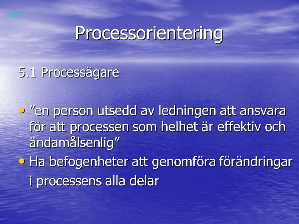 Processorientering 5.1 Processägare