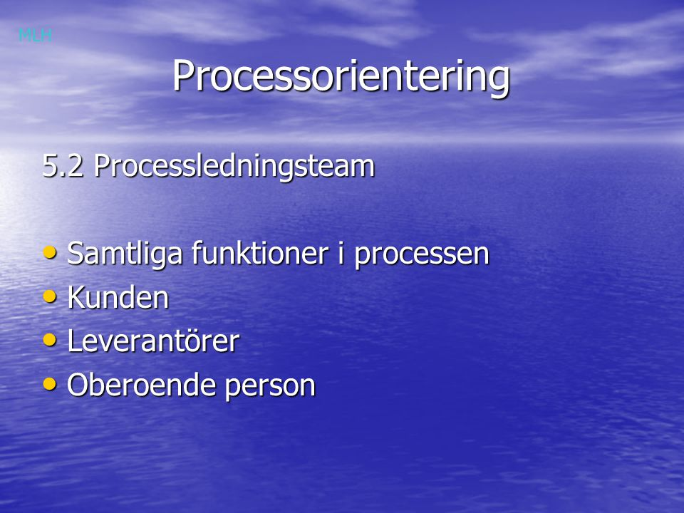 Processorientering 5.2 Processledningsteam
