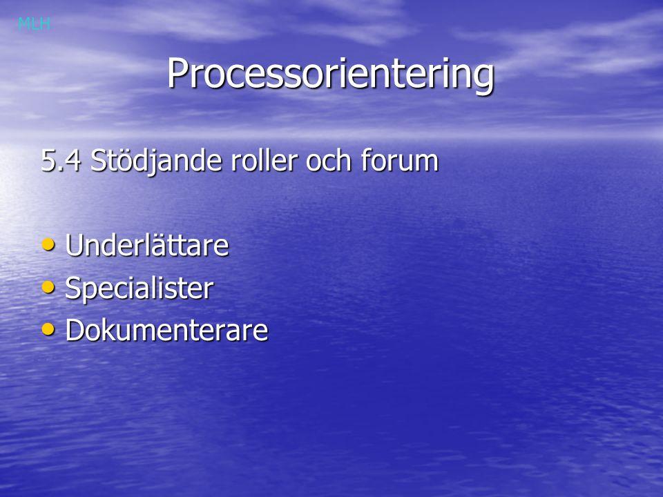 Processorientering 5.4 Stödjande roller och forum Underlättare