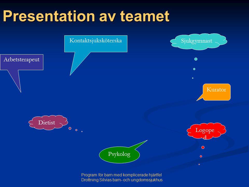 Presentation av teamet