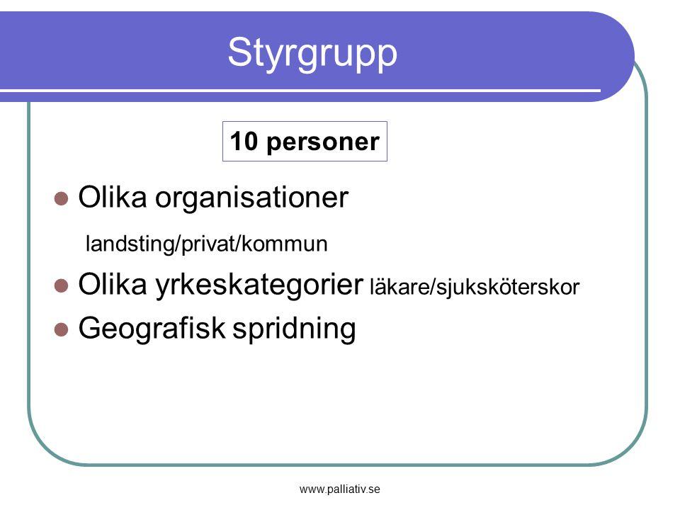 Styrgrupp Olika organisationer landsting/privat/kommun