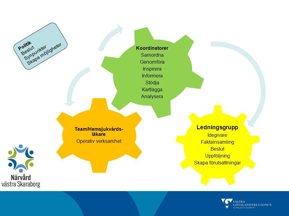 Team/Hemsjukvårds-läkare