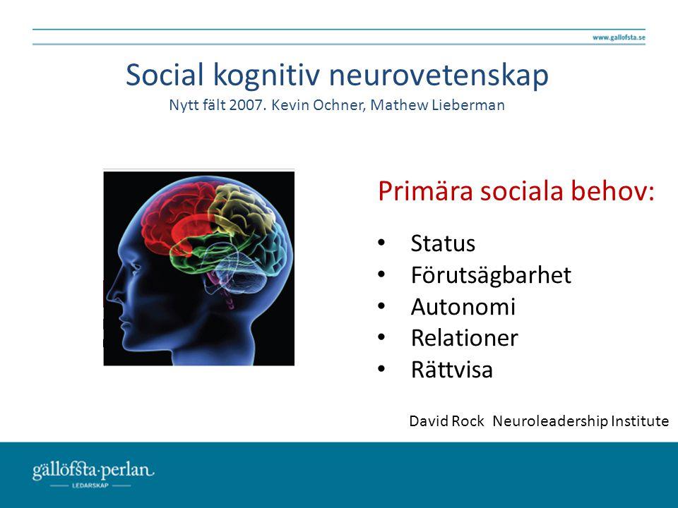 Social kognitiv neurovetenskap