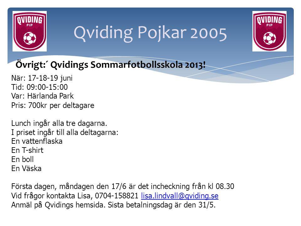 Qviding Pojkar 2005 Övrigt:´ Qvidings Sommarfotbollsskola 2013!