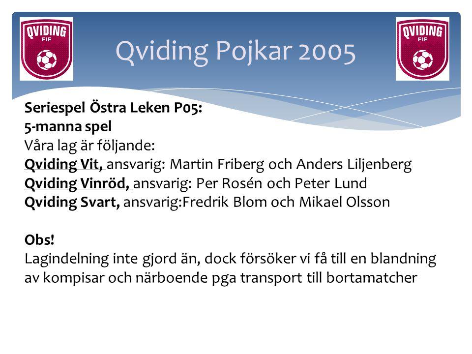 Qviding Pojkar 2005 Seriespel Östra Leken P05: 5-manna spel