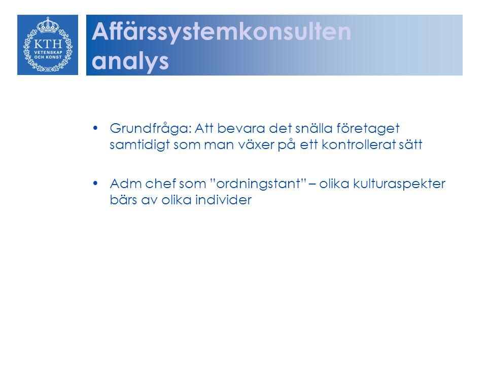 Affärssystemkonsulten analys