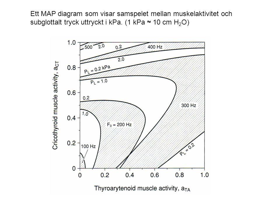 Ett MAP diagram som visar samspelet mellan muskelaktivitet och subglottalt tryck uttryckt i kPa.