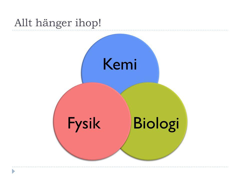 Allt hänger ihop! Kemi Biologi Fysik