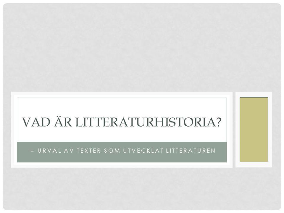 Vad är litteraturhistoria