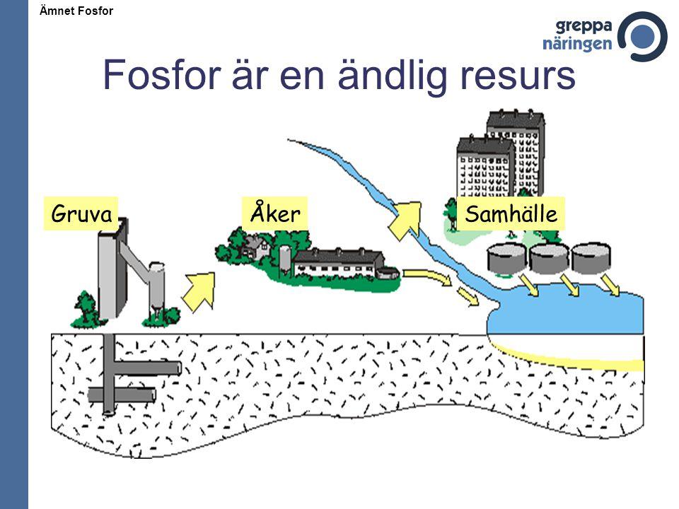 Fosfor är en ändlig resurs