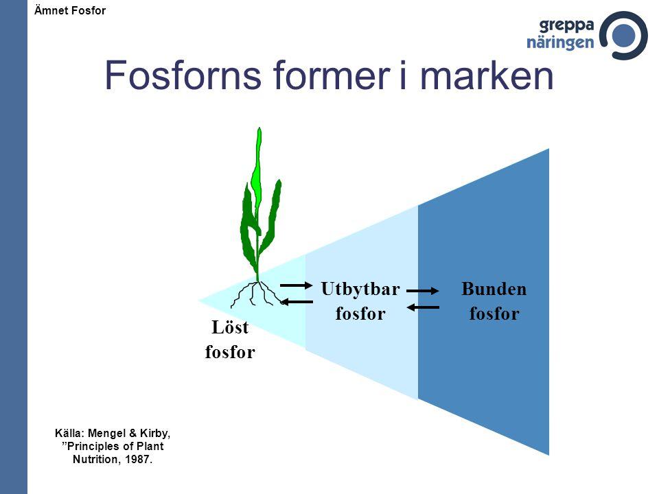 Fosforns former i marken