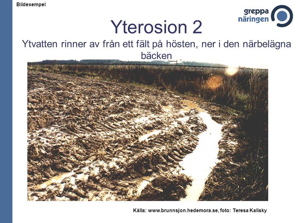 Källa: www.brunnsjon.hedemora.se, foto: Teresa Kalisky
