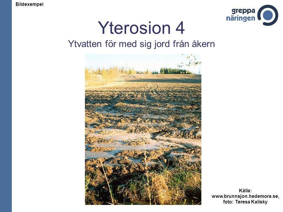 Yterosion 4 Ytvatten för med sig jord från åkern