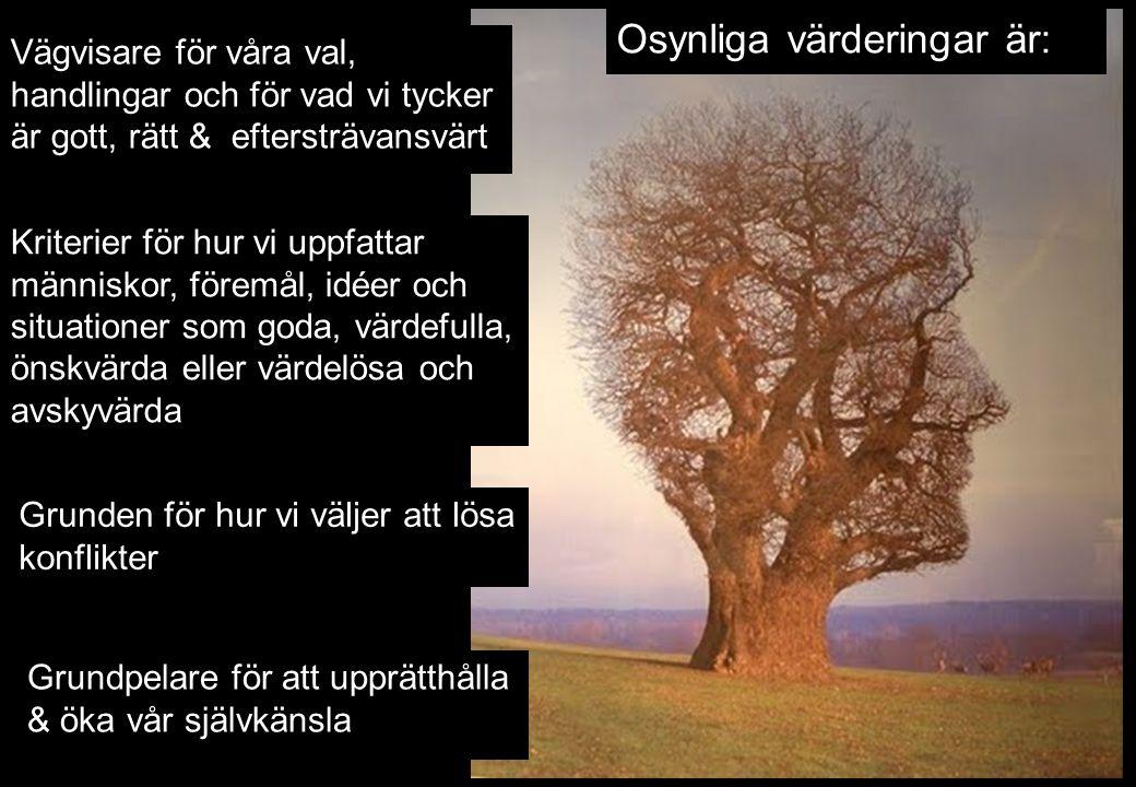 Osynliga värderingar är: