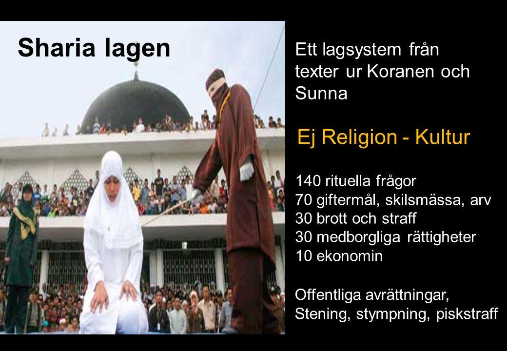Sharia lagen Ej Religion - Kultur