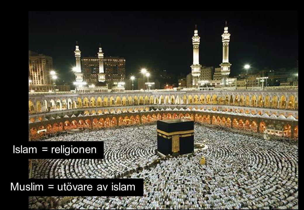 Muslim = utövare av islam