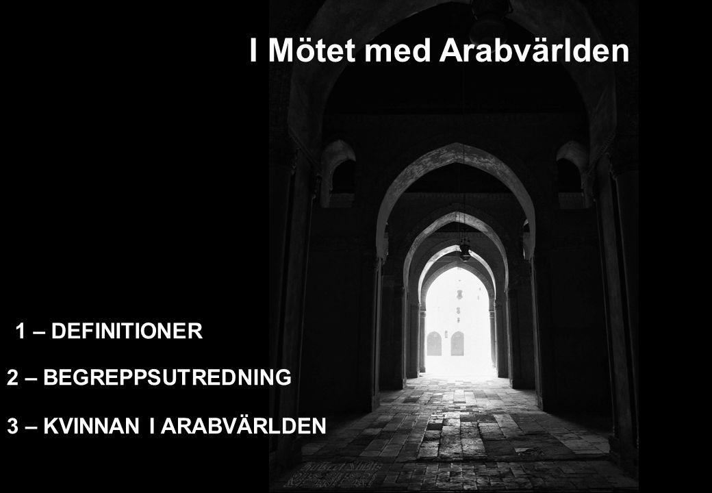 I Mötet med Arabvärlden