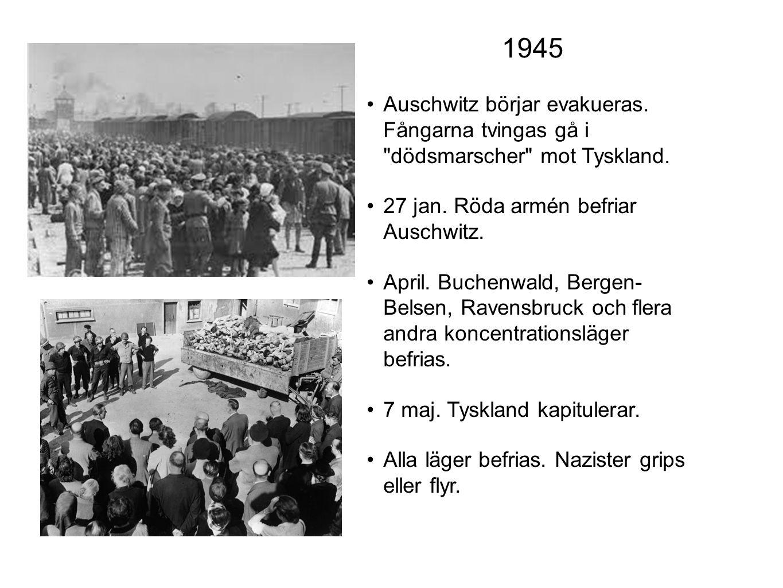 1945 Auschwitz börjar evakueras. Fångarna tvingas gå i dödsmarscher mot Tyskland. 27 jan. Röda armén befriar Auschwitz.