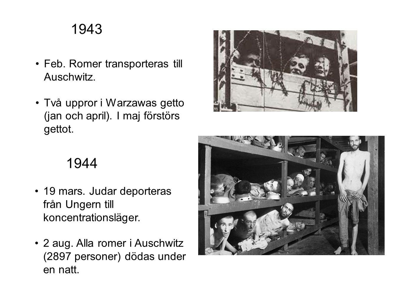 1943 1944 Feb. Romer transporteras till Auschwitz.