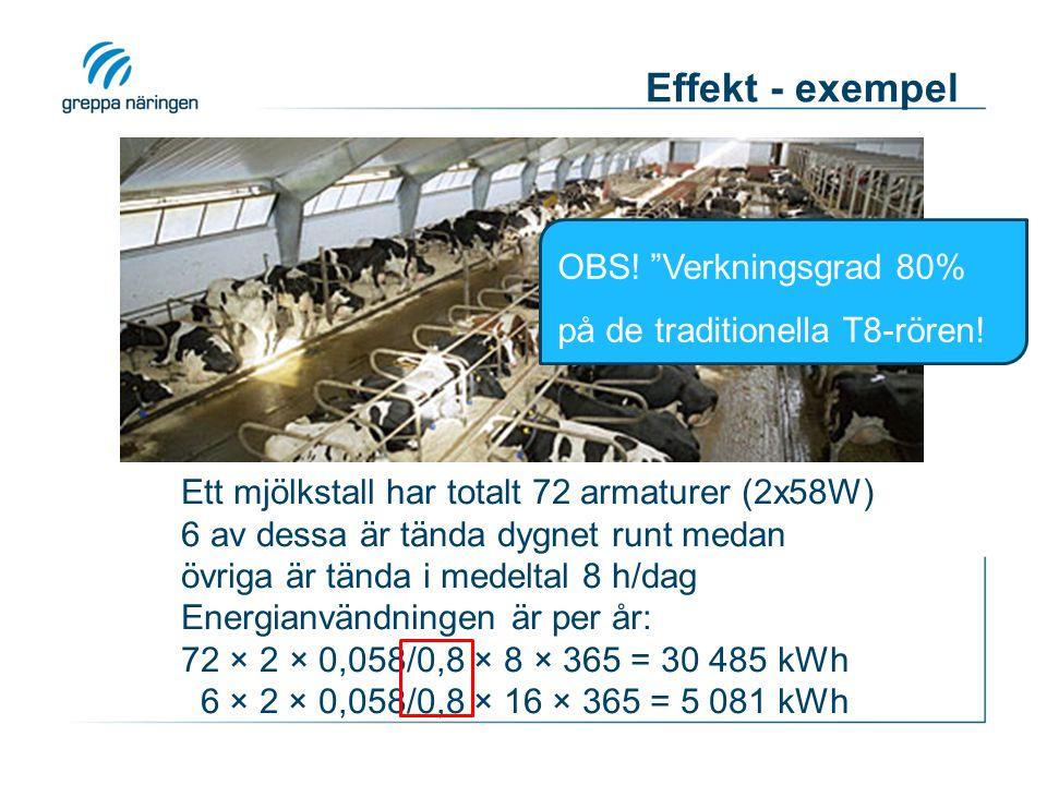 Effekt - exempel OBS! Verkningsgrad 80% på de traditionella T8-rören!